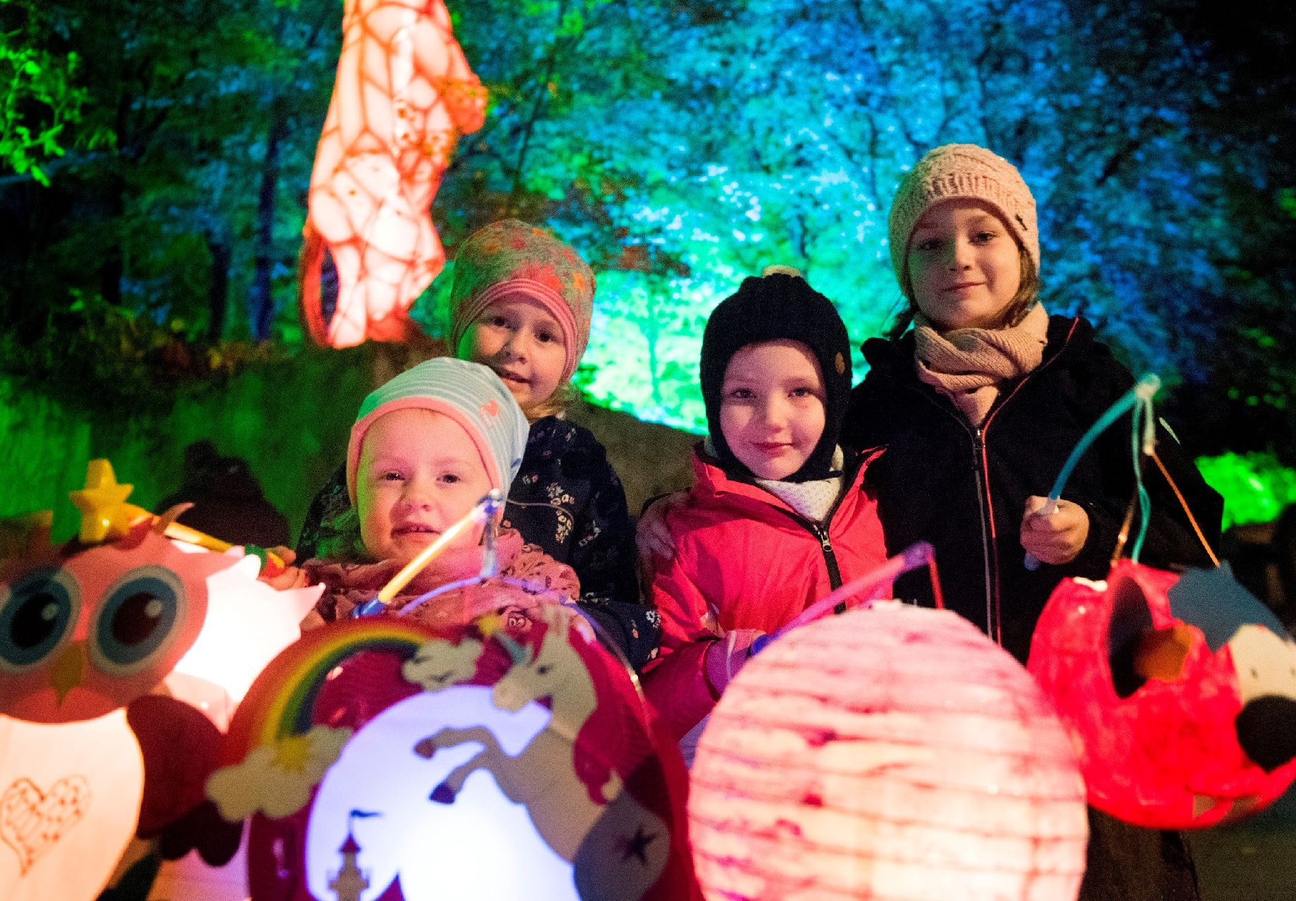 zoo lights osnabrück 2019